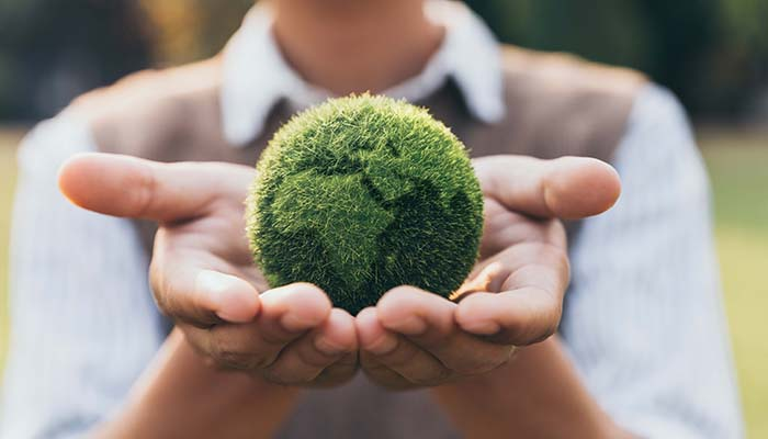 pic-sustainability-governance-1.jpg